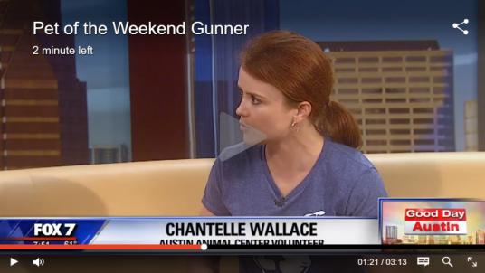 Chantelle Wallace